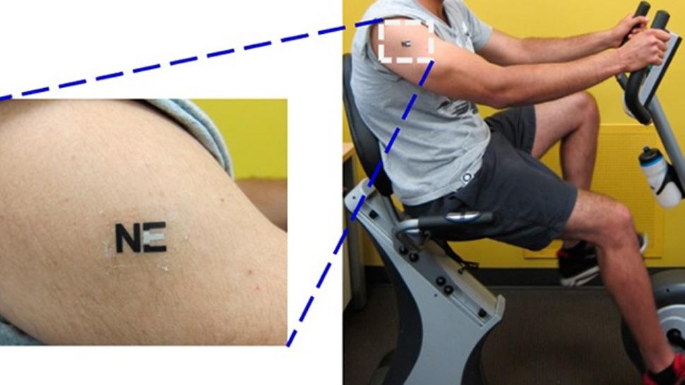 Un tatuaje detecta con el sudor que su cuerpo se va a agotar