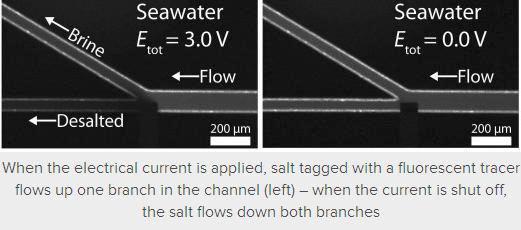 Inventan chip desalinizador de agua de mar