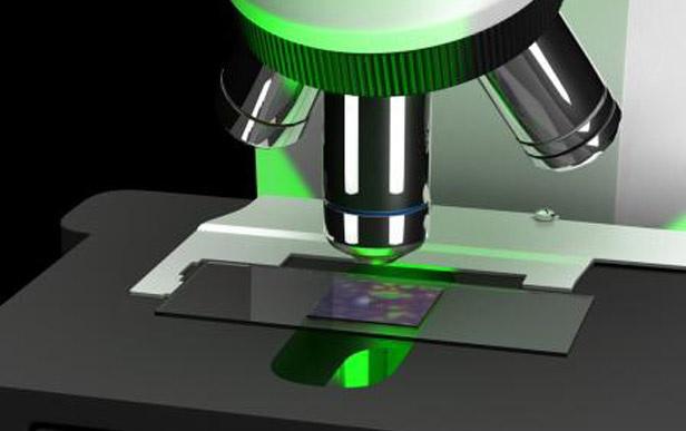 Logran que un microscopio convencional entregue imágenes de alta resolución