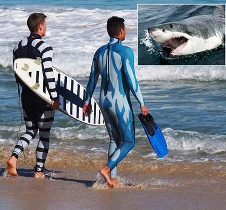 Desarrollan traje de invisibilidad para buceadores y surfistas, contra tiburones