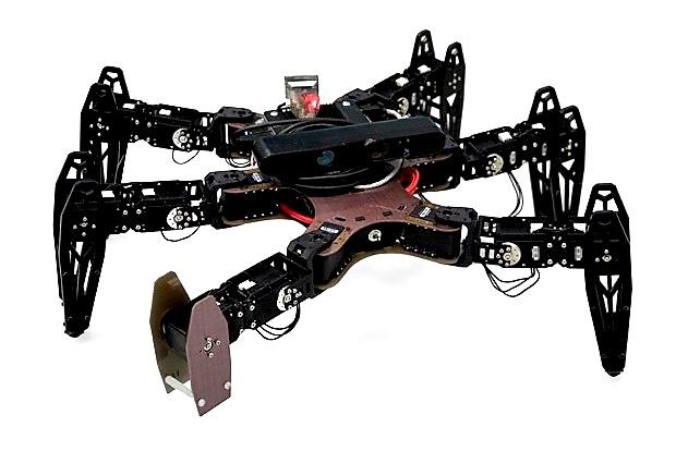 Cómo un robot hexápodo se recupera ante la falla de una de sus patas