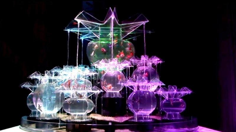 Acuarios convertidos en exhibición artística multimedia