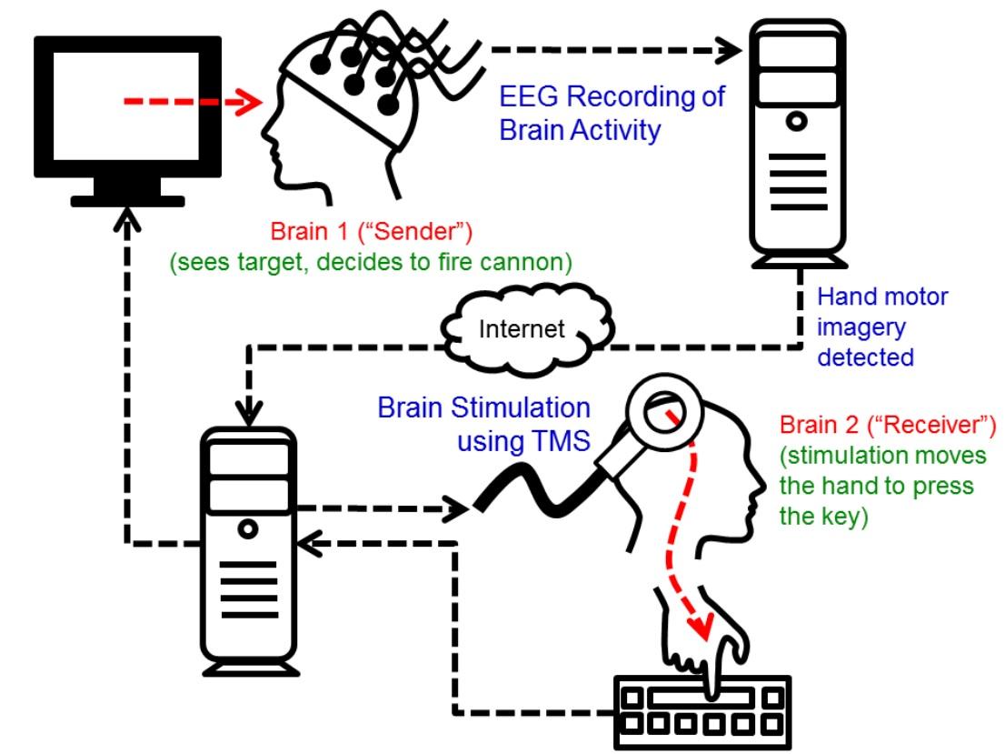 Científicos logran controlar el cuerpo de una persona desde el cerebro de otra