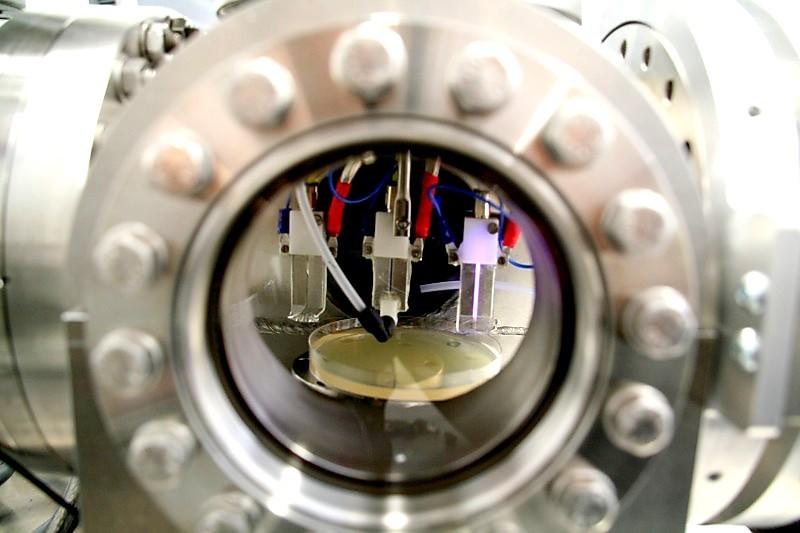 Plasma para atacar a las bacterias resistentes a antibióticos