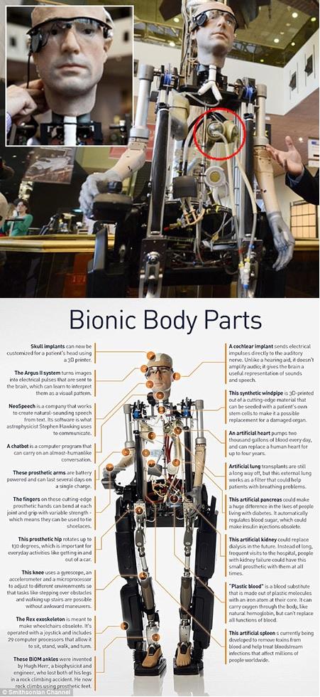 Robot biónico con corazón, pulmones y páncreas artificiales