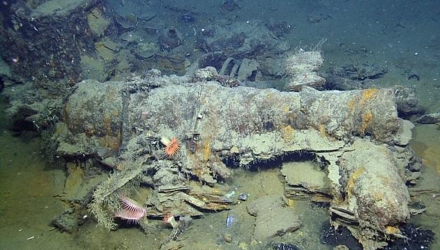 Podrá ver una exploración submarina en vivo y en directo del lecho marino