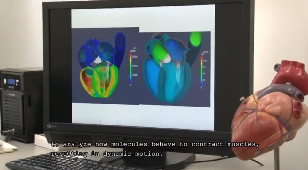Súpercomputadora perfecciona simulador del corazón