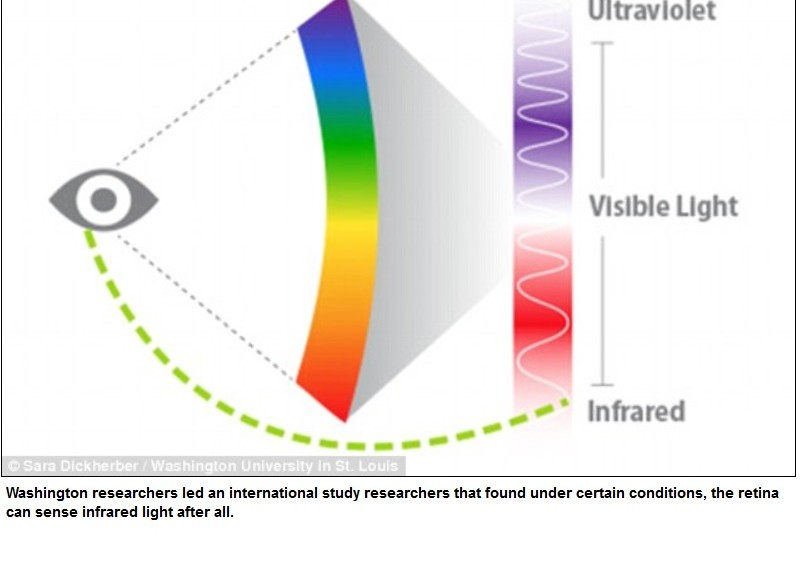 El ojo humano sí puede ver la luz infrarroja
