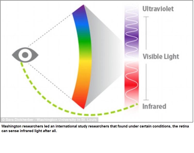 El ojo humano sí puede ver la luz infrarroja - PDM Productos ...