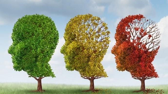 El riesgo de sufrir alzhéimer y párkinson podría detectarse en la piel