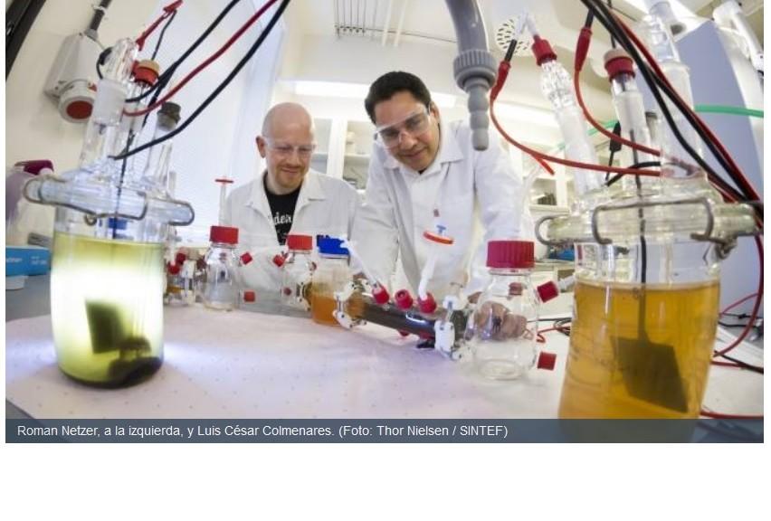 Celdas de combustible alimentadas por bacterias