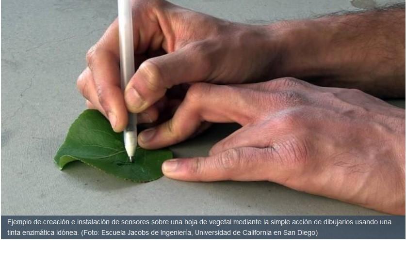 Tintas que permiten crear sensores dibujándolos con un bolígrafo común