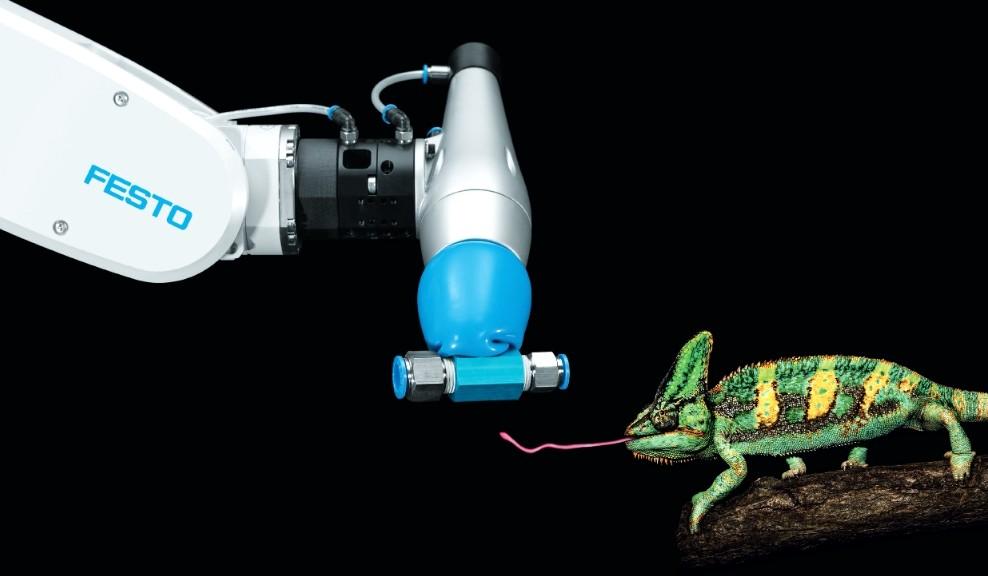 Brazo robótico que agarra lo que sea