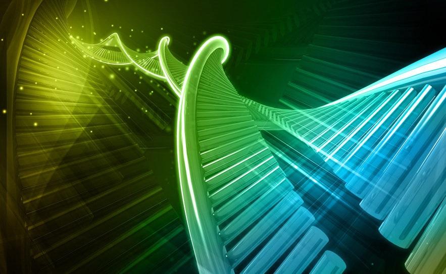 "Crean ADN"" artificial capaz de codificar información en binario"