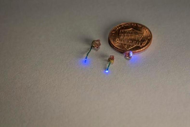 Un pulso de luz controla el dolor o el movimiento de ratones
