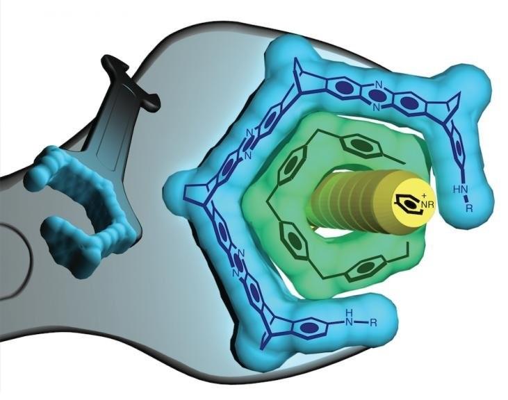 """Inventan """"llave inglesa"""" nanométrica para controlar formas moleculares"""