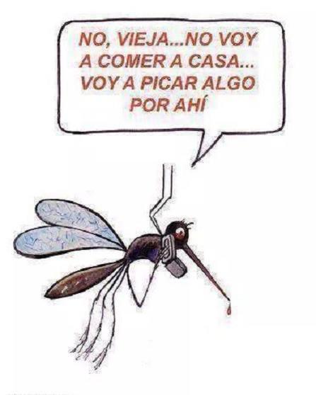 Así detectan los mosquitos a su víctima