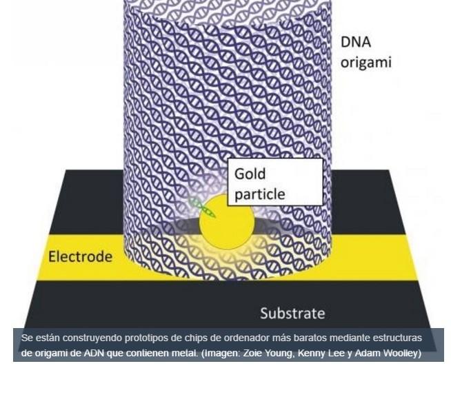 ADN para fabricar computadores más baratos