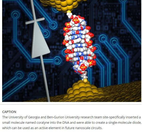 Investigadores han fabricado el diodo más pequeño usando una molécula de ADN