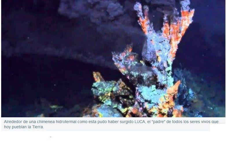 Así era LUCA, el primer ser vivo de la Tierra
