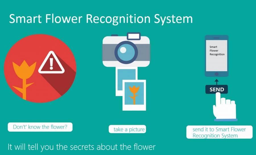 Microsoft crea el Shazam para las flores