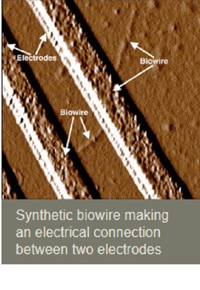 Logran fabricar nanocables 60 mil veces más delgados que un cabello humano