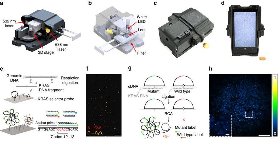 Logran secuenciar ADN con un teléfono inteligente