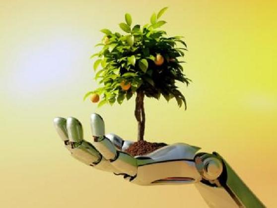Crean un árbol artificial que genera electricidad