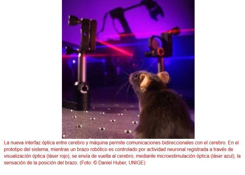 Comunicación plenamente bidireccional mediante interfaz cerebro-máquina
