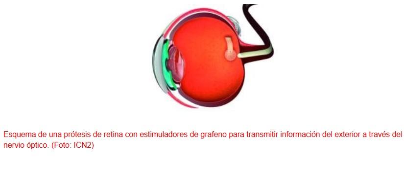Desarrollan prótesis de retina basadas en grafeno