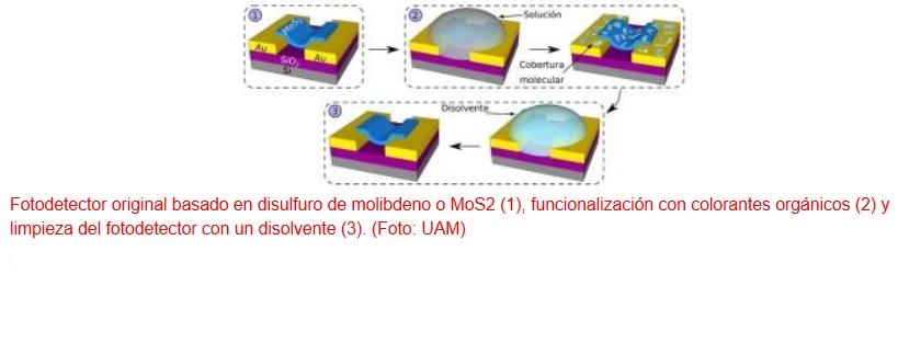 Nuevo fotodetector 2D ultrasensible