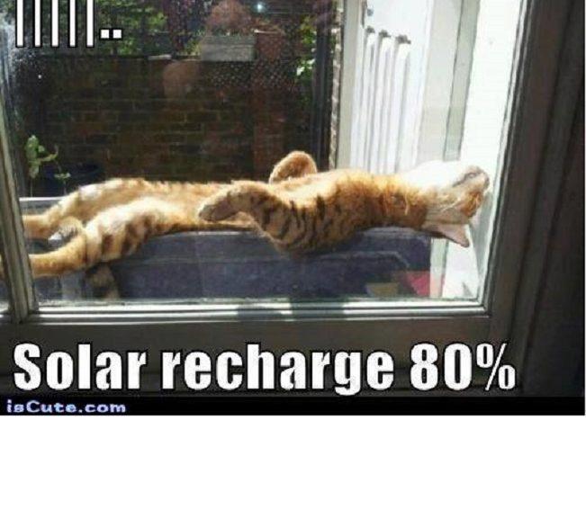 Nuevo diseño de célula solar para lograr una eficiencia de conversión energética de más del 50 por ciento