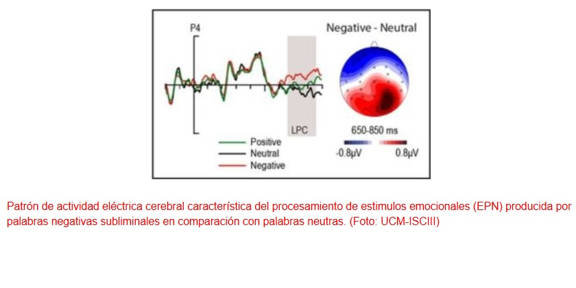 Las emociones procesadas de forma inconsciente influyen en las decisiones
