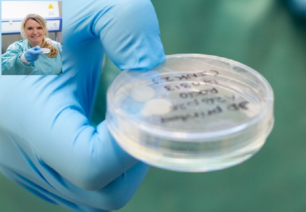 Crean cartílago mediante bioimpresión 3D