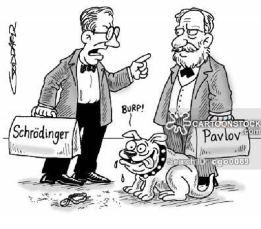 El paradójico gato de Schrödinger aparece en un laboratorio de óptica