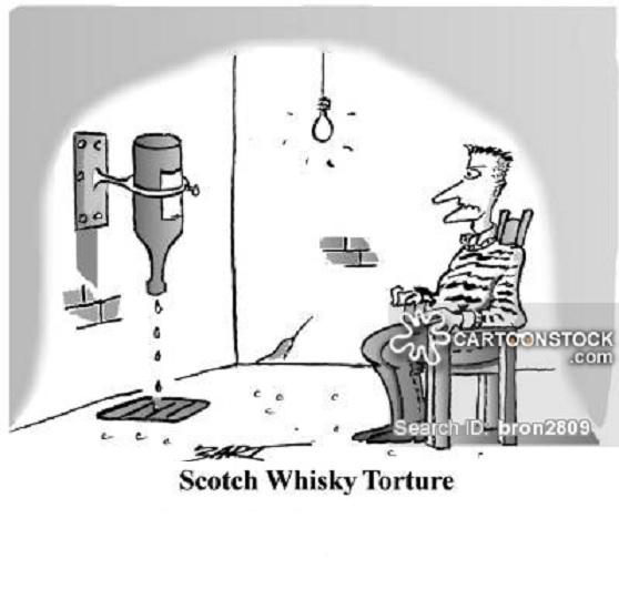 Nariz, lengua y ojo electrónicos para distinguir tipos de whisky