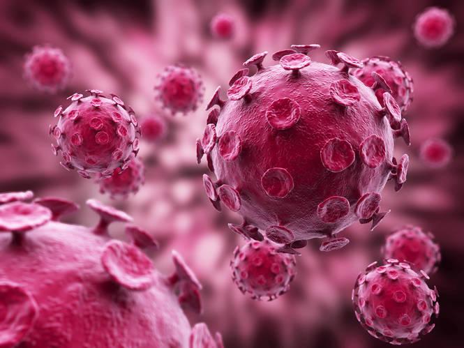 Un nuevo anticuerpo ataca al 99 % de las cepas del virus VIH