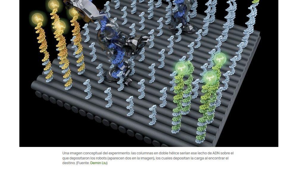 Nanobots autónomos de ADN para transportar medicinas dentro del cuerpo humano