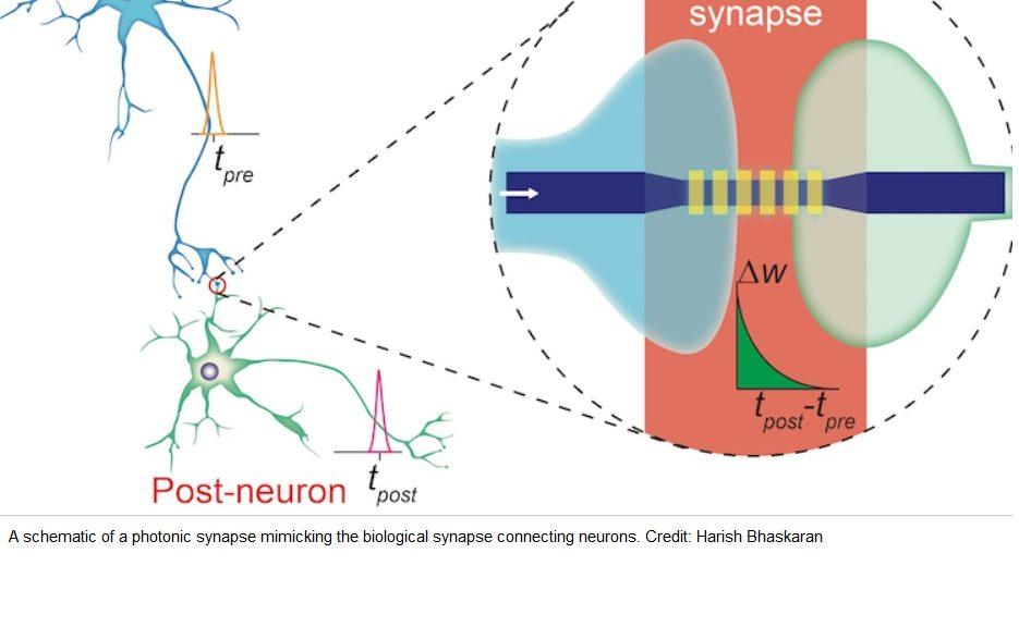 Crean microchips que funcionan como neuronas