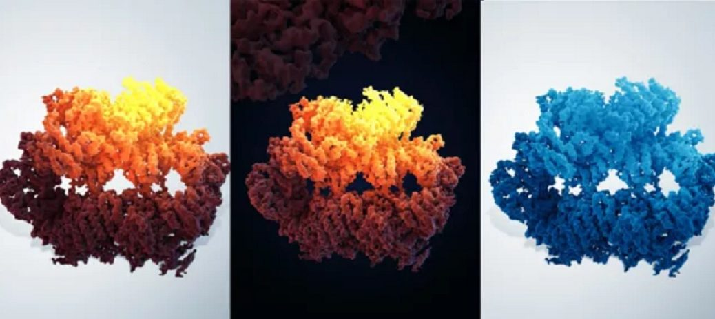 Imagen a resolución atómica que nos ayuda a entender cómo se repara el ADN