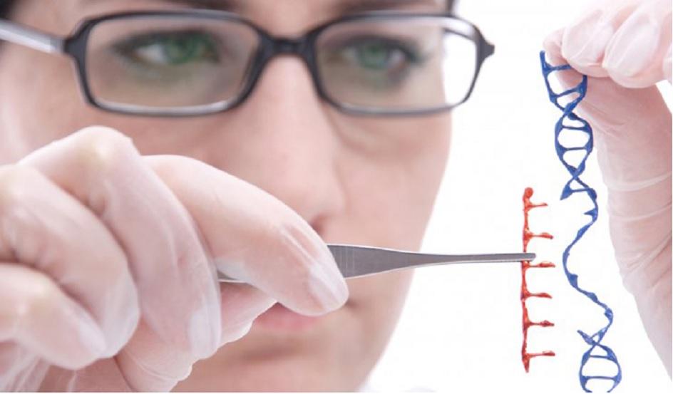 CRISPR-Cas modificado ayuda a tratar enfermedades en ratones sin modificar su ADN