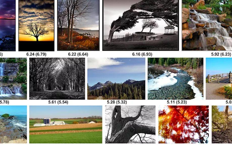 Inteligencia artificial puede calificar fotos para descubrir lo que le gustará