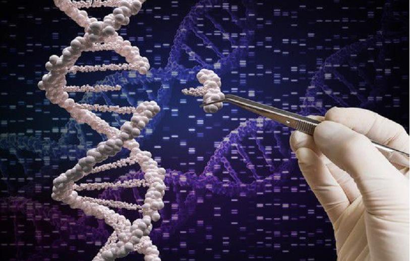 Inteligencia artificial para lograr que la edición genética CRISPR sea más precisa