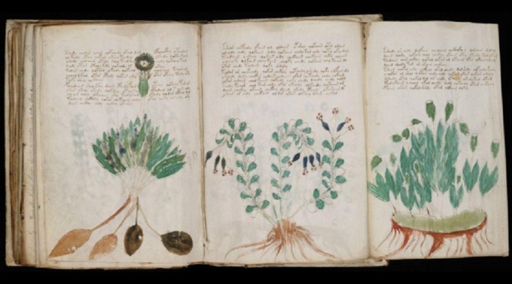 Inteligencia artificial comienza a descifrar el manuscrito Voynich