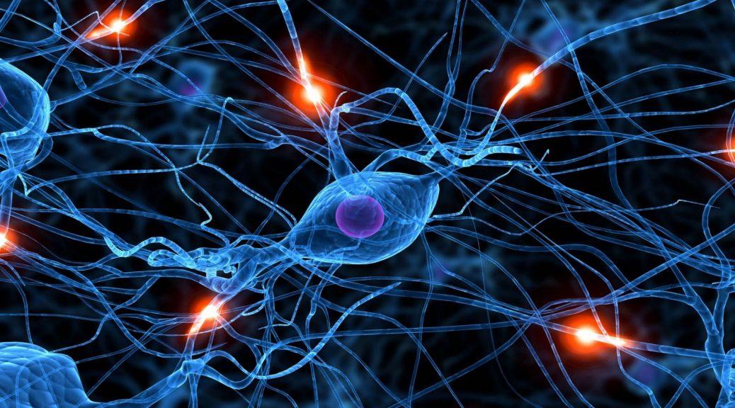 """Diseñan sinapsis artificiales para lograr obtener un """"cerebro en un chip"""""""