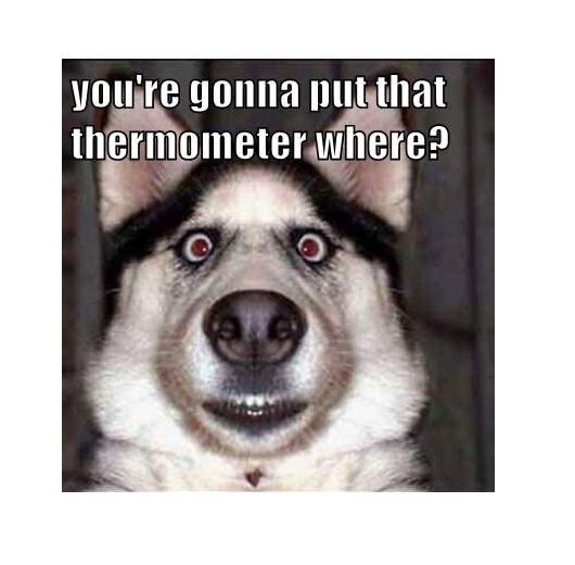 Científicos crean un sensor de temperatura ultransensible