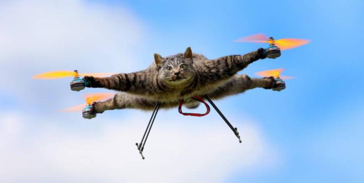 Trabajan en programar drones para que sepan esquivar obstáculos imprevistos