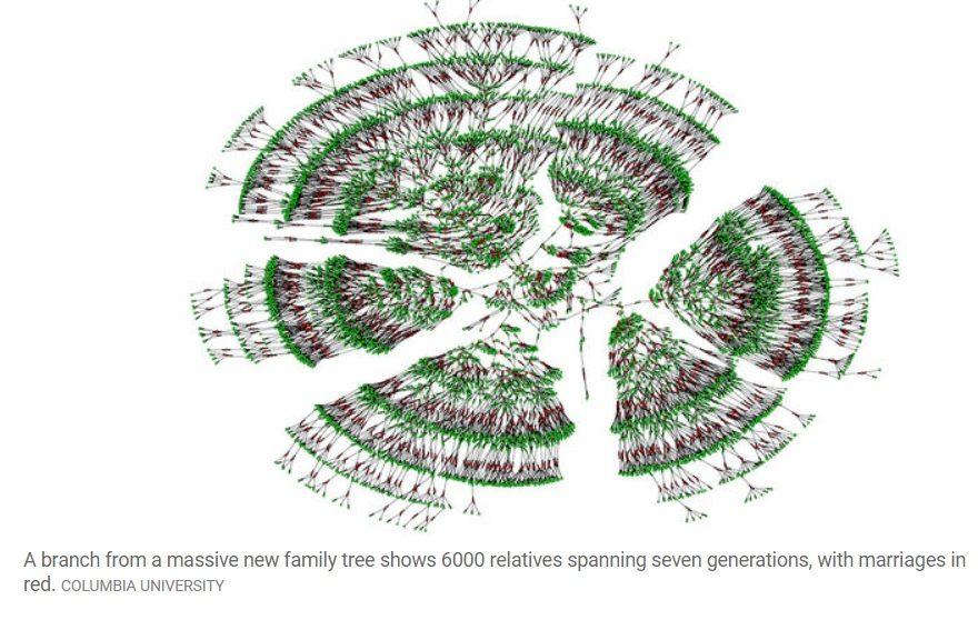 Crean el mayor árbol genealógico de la humanidad