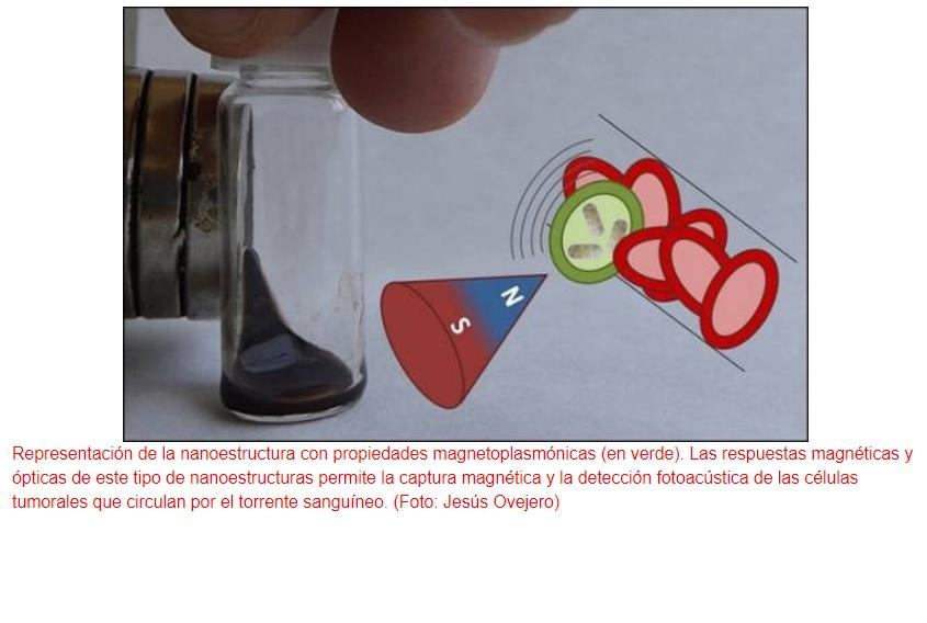 Logran detección fotoacústica de células tumorales en la sangre