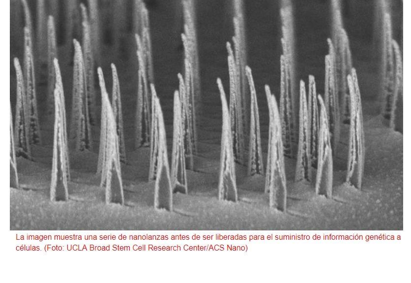 """Desarrollan método para introducir biomoléculas en células mediante """"nanolanzas"""""""
